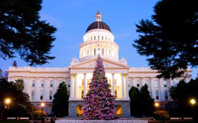 Capitol Holiday Tree in Sacramento California